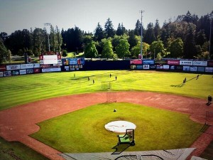 The beautiful Scotiabank Field at Nat Bailey Stadium.