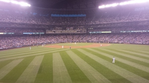 The view from the outfield.