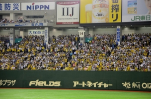 Hanshin Tigers fans, taking up an entire outfield section in left.